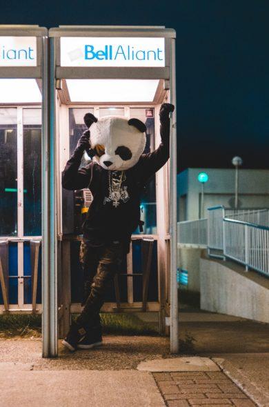Panda in Telefonzelle